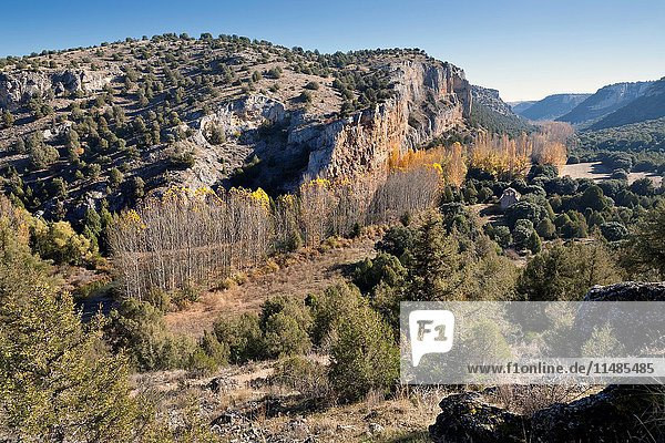 Canyon of river Riaza. Segovia. Castilla Leon. Spain. Europe.