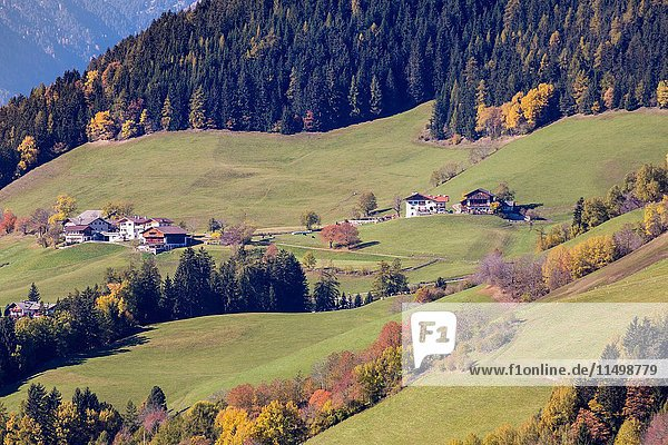 Autumnal landscape. Santa Maddalena  Val di Funes  Bolzano  Trentino Alto Adige - Sudtirol  Italy  Europe.