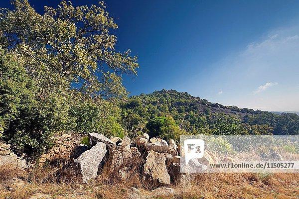 Santa Catalina hill in El Real de San Vicente. Toledo. Castilla la Mancha. Spain. Europe.