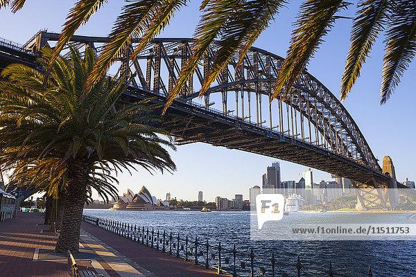 Harbour Bridge  Darling Harbour  Sydney  New South Wales  Australia