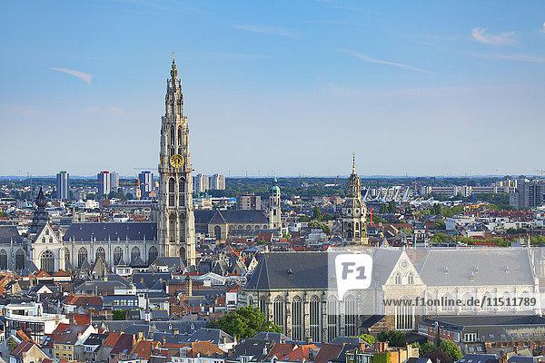 View of Onze-Lieve-Vrouwe Cathedral  Antwerp  Flanders  Belgium