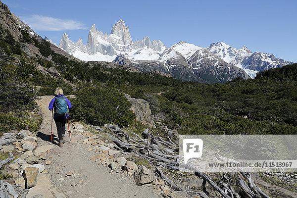View of Mount Fitz Roy on Laguna de Los Tres trail  El Chalten  Patagonia  Argentina  South America