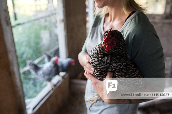 Woman holding chicken in chicken coop