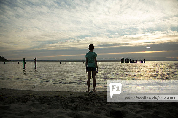 Teenage girl standing on beach  looking at view  rear view