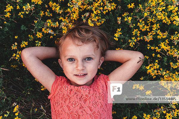 Porträt eines auf dem Rücken liegenden Mädchens inmitten gelber Wildblumen