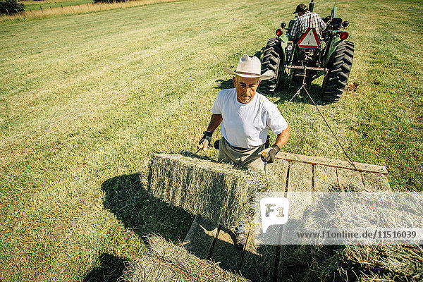 Caucasian farmer lifting bale of hay