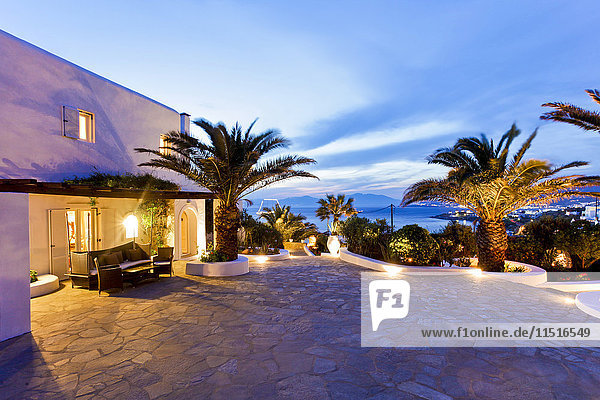 Palm trees on stone patio at sunset