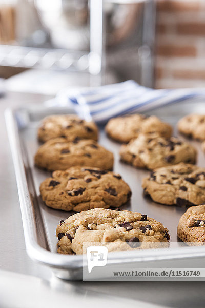 Tray of fresh chocolate chip cookies