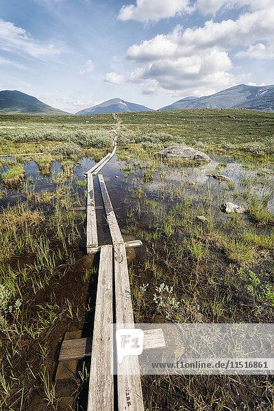 Boardwalk in marsh near mountains