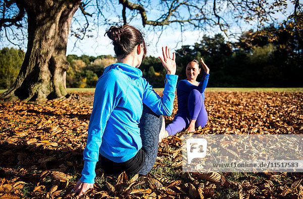 Zwei Frauen machen am Herbsttag Yoga im Park