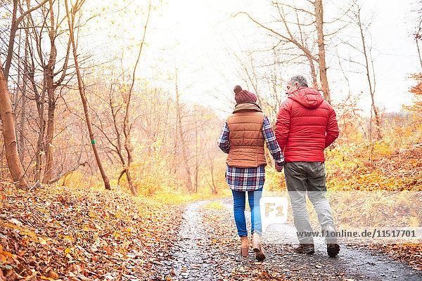 Älteres Paar beim Spaziergang auf einem ländlichen Pfad  im Herbst  Rückansicht