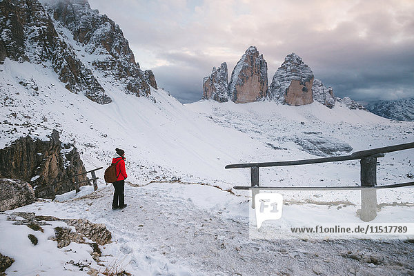 Female hiker looking at view  Tre Cime di Lavaredo area  South Tyrol  Dolomite Alps  Italy