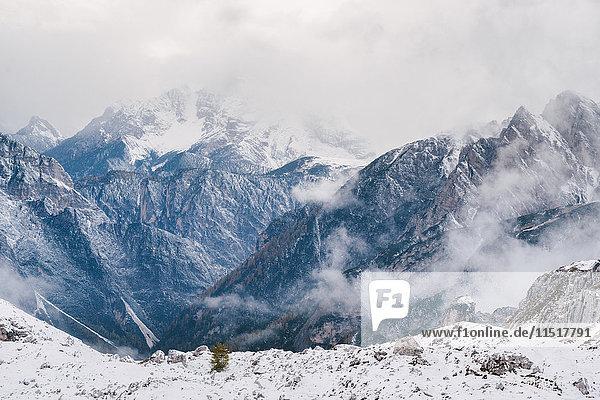 Tre Cime di Lavaredo area  South Tyrol  Dolomite Alps  Italy