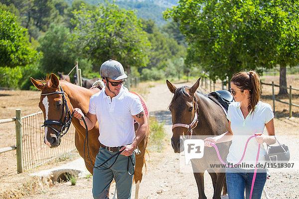 Männliche und weibliche Stallknechte,  die Pferde von der Koppel in ländlichen Ställen führen