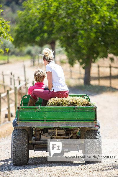 Rückansicht von männlichen und weiblichen Stallknechten  die in ländlichen Ställen mit Strohballen Pick-Up fahren