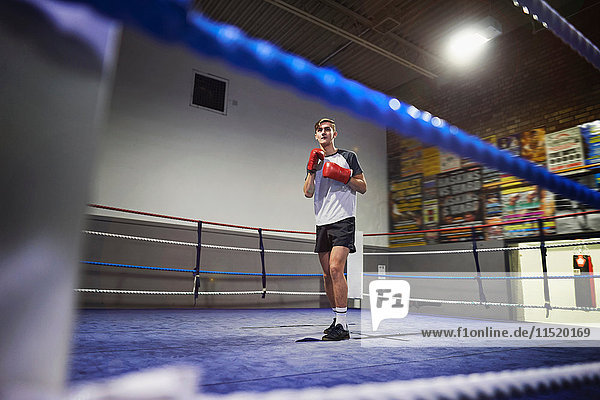 Young male boxer standing poised in boxing ring