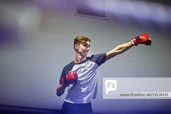 Young male boxer punching in boxing ring