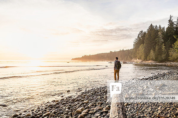 Man looking out from driftwood log on beach in Juan de Fuca Provincial Park  Vancouver Island  British Columbia  Canada