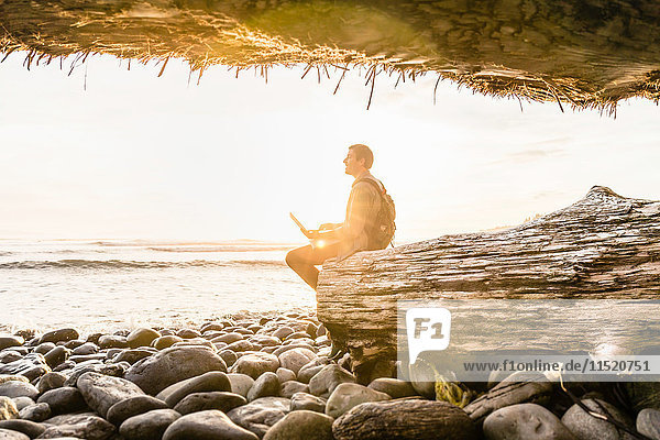 Man sitting with laptop looking out from beach in Juan de Fuca Provincial Park  Vancouver Island  British Columbia  Canada