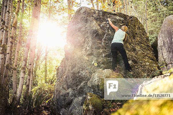 Weibliche Felsblockerinnen bewegen sich auf Waldgestein  Horne Lake Caves Provincial Park  Vancouver Island  British Columbia  Kanada