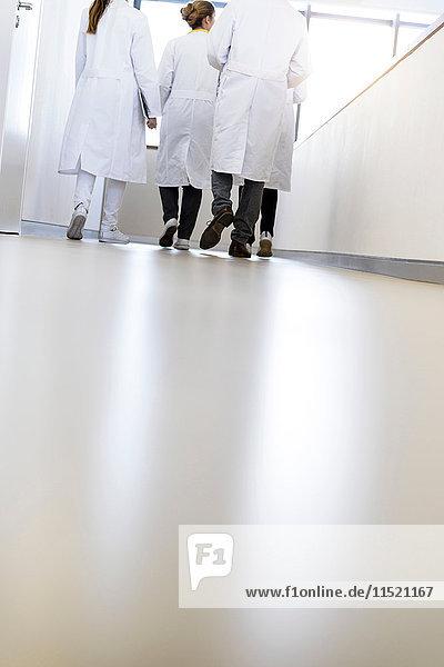 Rückansicht von männlichen und weiblichen Ärzten  die im Krankenhauskorridor gehen