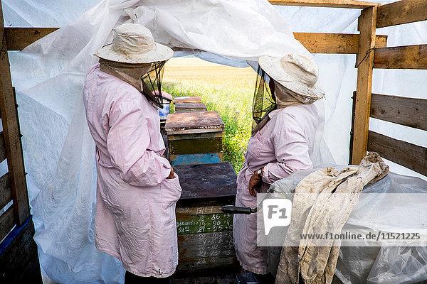 Zwei Imkerinnen schauen aus dem Unterschlupf heraus
