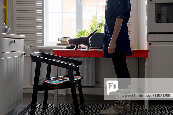 Frau beobachtet Kätzchen auf dem Küchentisch