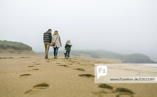 Family walking with dog on the beach on a foggy winter day