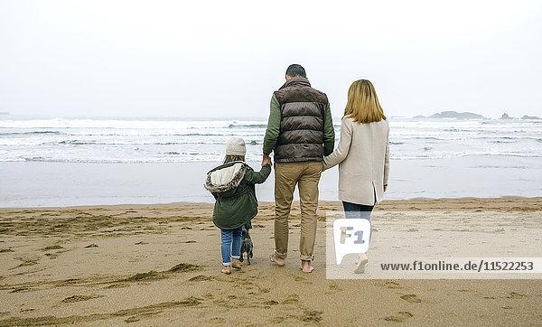 Familienwanderung mit Hund am Strand im Winter