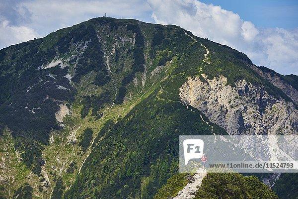 Deutschland  Bayern  Junge Frau beim Laufen in den Bergen