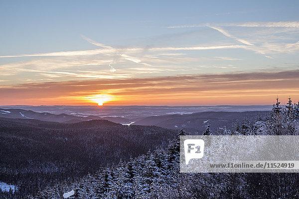 Deutschland  Sachsen-Anhalt  Nationalpark Harz  Sonnenuntergang im Winter