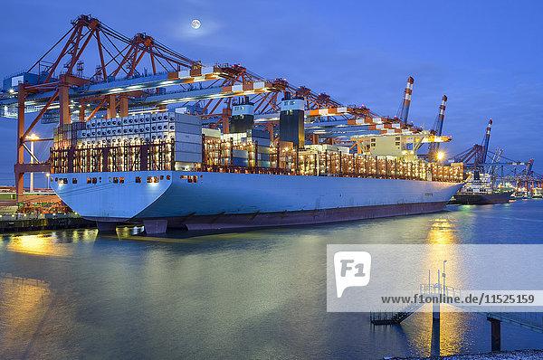 Deutschland  Hamburg  Containerschiff im Terminal am Morgen