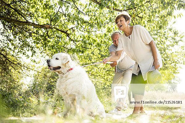 Seniorenpaar beim Walken mit Hund