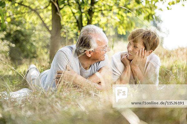 Glückliches Senior-Paar auf der Wiese liegend