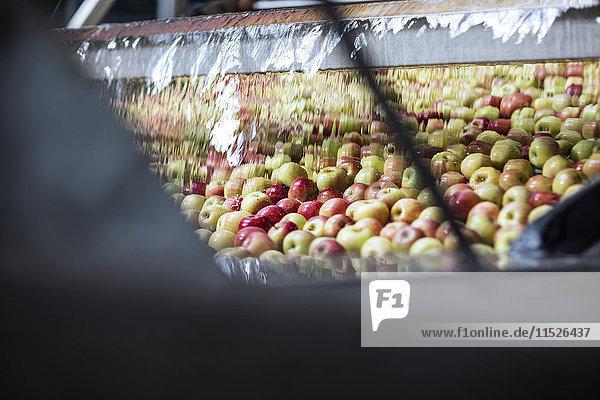 Äpfel im Werk in Plastik verpackt