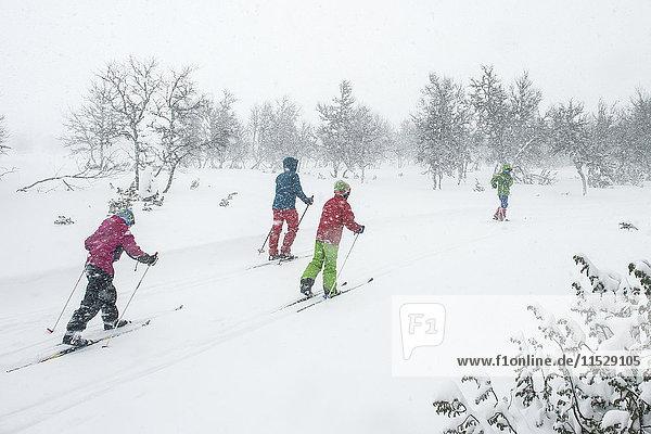 Children snowshoeing in forest