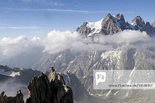 Frankreich  Ecrins Massif  Aiguille Noire de Peuterey und Mont Pelvoux  jubelnder Gipfelstürmer