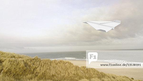 Papierfläche  Strand im Hintergrund  3D Rendering Papierfläche, Strand im Hintergrund, 3D Rendering