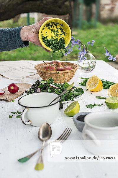 Salat mit Schnittlauch von Hand zubereiten