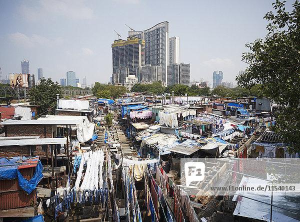 Indien  Maharashtra  Mumbai  Dhobi Ghat  Wäscherei