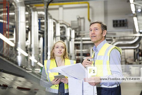 Kollegen mit reflektierendem Halteplan im Industriebetrieb