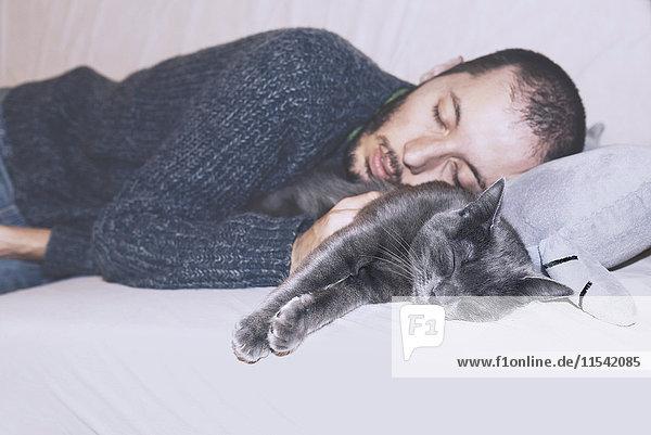 Russian Blue und der Besitzer schläft auf der Couch. Russian Blue und der Besitzer schläft auf der Couch.