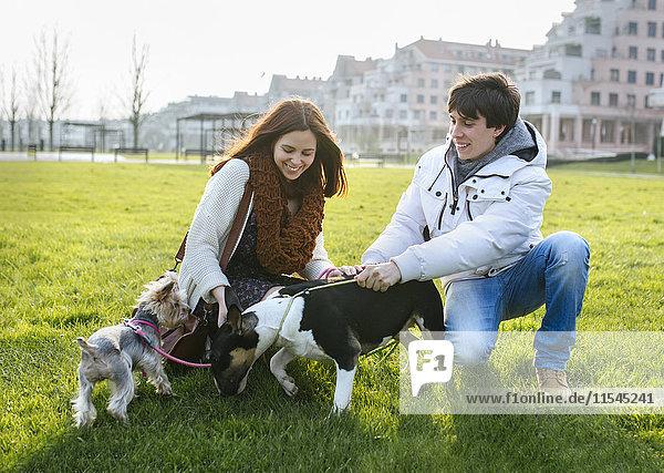 Junges Paar mit ihren Hunden auf einer Wiese