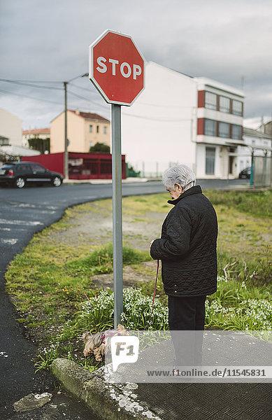 Seniorin geht mit ihrem Yorkshire Terrier spazieren.