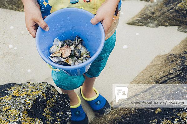 Junge hält Eimer mit Muscheln am Strand