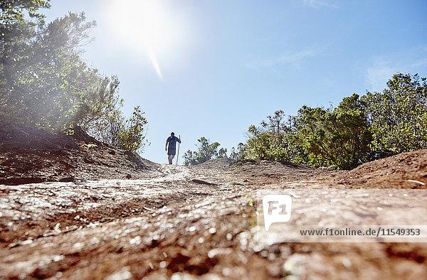 Spanien,  Kanarische Inseln,  La Gomera,  Wanderer auf Trail