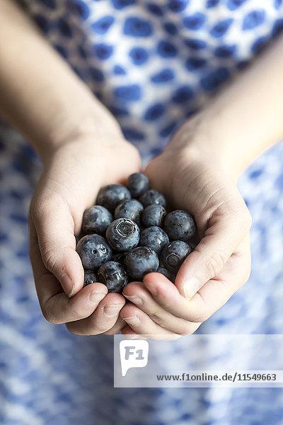 Hands of girl holding blueberries