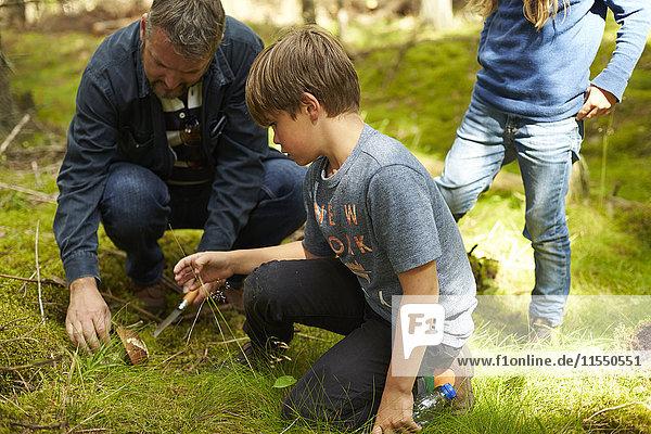 Schweden  Vater und seine beiden Kinder beim Pilzsammeln