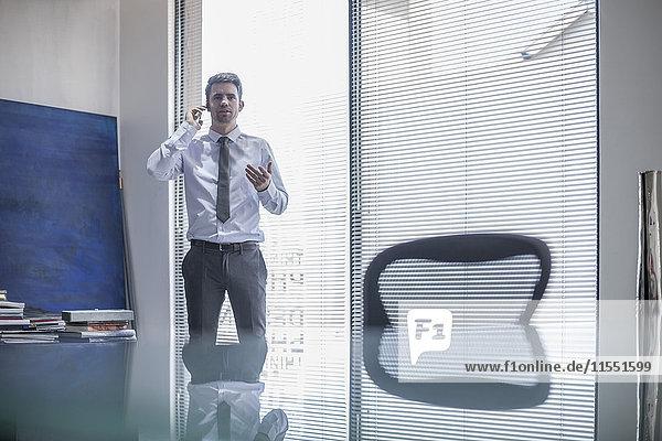 Geschäftsmann im Büro am Telefon