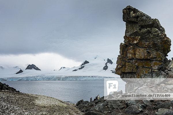 Penguins below dramatic rock formations  Half Moon Bay  South Sheltand Islands  Antarctica  Polar Regions